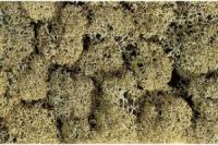 Dekormoos steingrau, sortiert