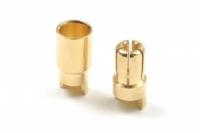 6.0mm Goldstecker, 2 Paare Buchse/Stift